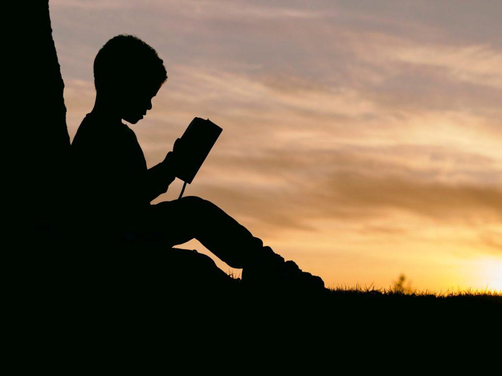 niño leyendo en campo
